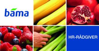 Er du BAMAs nye HR-rådgiver?